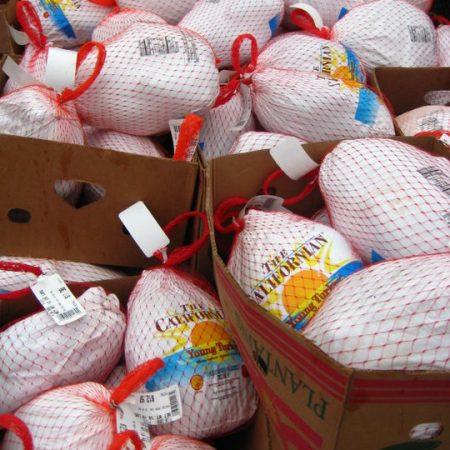 FTN turkeys